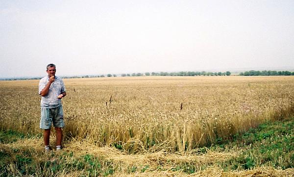 cultura agricola ecologica